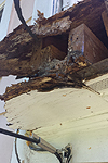 Rotted fascia board and soffit
